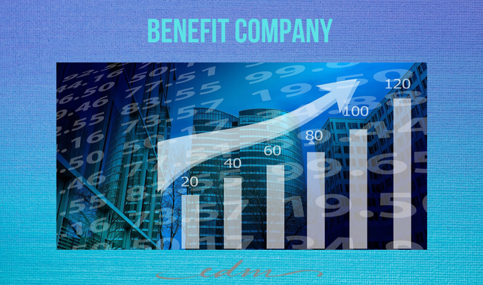 BENEFIT COMPANY